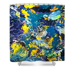 Colorful Tropical Fish Shower Curtain by Elena Elisseeva