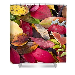 Colors Of Autumn Shower Curtain by Shane Bechler