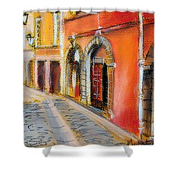 Colors Of Lyon 4 Shower Curtain by Mona Edulesco