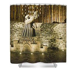 Copernicus - Wieliczka Salt Mine Shower Curtain by Jon Berghoff