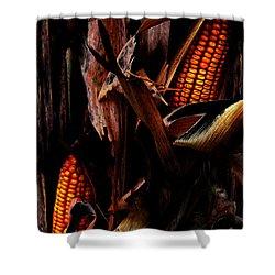 Corn Stalks Shower Curtain by Rachel Christine Nowicki