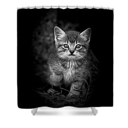 Courageous Shower Curtain by Kim Henderson