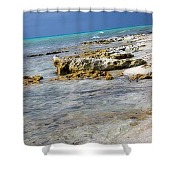 Cozumel Before Thunder Shower Curtain by Danielle  Parent