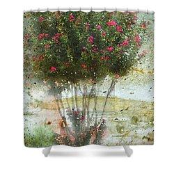 Crape Myrtle Shower Curtain by Debbie Portwood