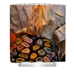 Crazee Corn Colors Shower Curtain by Susan Herber