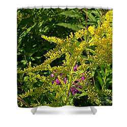 Curves Of Goldenrod Shower Curtain by Judi Bagwell