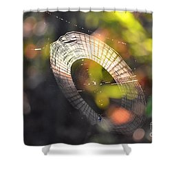 Dappled Web Of Deceit Shower Curtain by Maria Urso