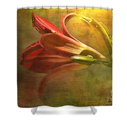 Daylily Photoart With Texture II  Shower Curtain by Debbie Portwood
