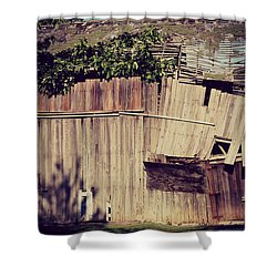 Days Gone By Shower Curtain by Paulette B Wright
