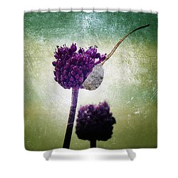 Delicate Shower Curtain by Stelios Kleanthous