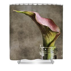 Dew Of A Lily Shower Curtain by Darren Fisher