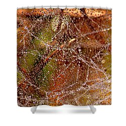 Dewdrops - Colorful Abstract Shower Curtain by Carol Groenen