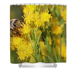 Do I Have Something On My Face Shower Curtain by Heidi Smith
