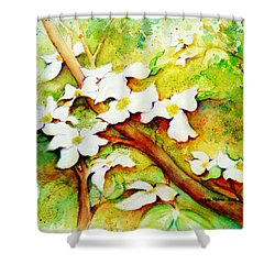 Dogwood Flowers Shower Curtain by Carla Parris