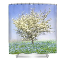 Dogwood In The Mist Shower Curtain by Debra and Dave Vanderlaan