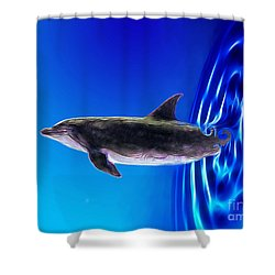 Dolphin Zoom Shower Curtain by Methune Hively