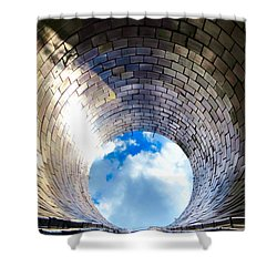 Down The Hole Shower Curtain by Michelle Milano