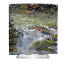 Downstream Shower Curtain by Marie Green