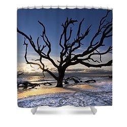 Driftwood Beach At Dawn Shower Curtain by Debra and Dave Vanderlaan
