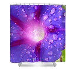 Droplets Glory Shower Curtain by Sonali Gangane