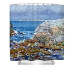 Duck Island Shower Curtain by Childe Hassam