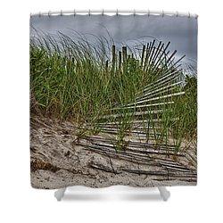 Dunes Shower Curtain by Rick Berk