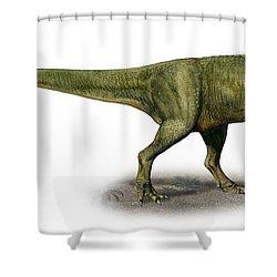 Duriavenator Hesperis, A Prehistoric Shower Curtain by Sergey Krasovskiy
