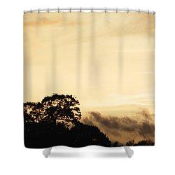 Dusk Forest  Shower Curtain by Pixel Chimp
