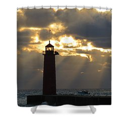 Early Morning Rays Shower Curtain by Kay Novy