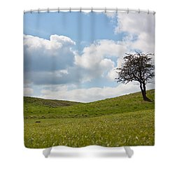 Early Spring Shower Curtain by Semmick Photo