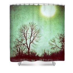 Eerie Landscape Shower Curtain by Jill Battaglia