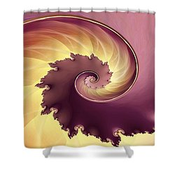Empire Shower Curtain by Richard Kelly
