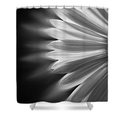 Enchanting Shower Curtain by Ivelina G
