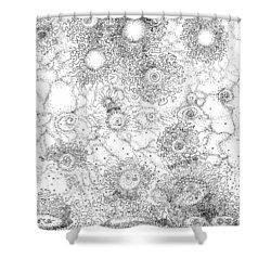 Entropic Repulsion Shower Curtain by Regina Valluzzi