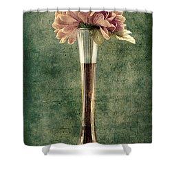 Estillo Vase - S02et01 Shower Curtain by Variance Collections