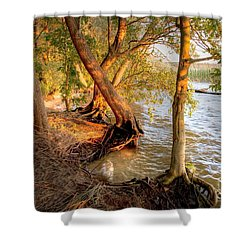 Evening At The Lake Shower Curtain by Heiko Koehrer-Wagner