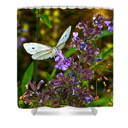 Everyday Miracles Shower Curtain by Byron Varvarigos