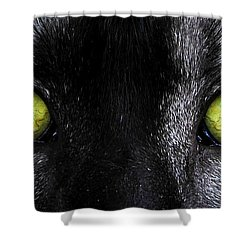 Eyes Shower Curtain by David Lee Thompson