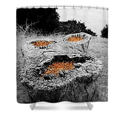 Faces In Nature Shower Curtain by Cheryl Young