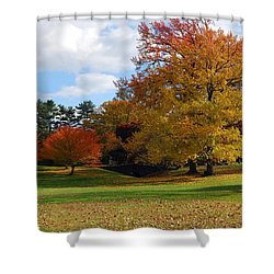 Fall Foliage Shower Curtain by Lisa Phillips