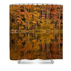 Fall Reflection Shower Curtain by Karol Livote