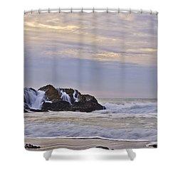 February Seascape Shower Curtain by Priya Ghose