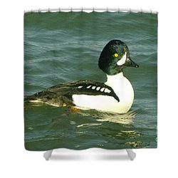 Feeling Ducky  Shower Curtain by Jeff Swan