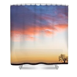 Feeling Small Shower Curtain by James BO  Insogna