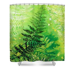 Ferns 4 Shower Curtain by Hanne Lore Koehler