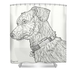 Finn In Black And White Shower Curtain by Salvadore Delvisco