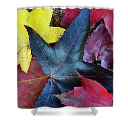 Five Fall Leaves Shower Curtain by Sandi OReilly