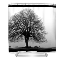 Foggy Day H-5 Shower Curtain by Mauro Celotti