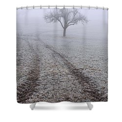Foggy Landscape With Tree Shower Curtain by Matthias Hauser
