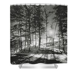 Forelacka Burial Ground Shower Curtain by Simon Marsden